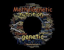 methyl genetic